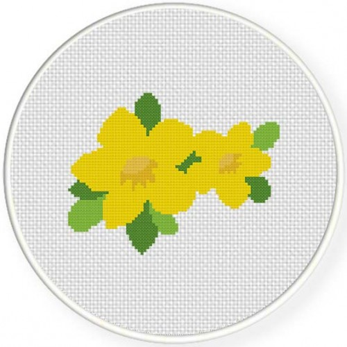 Allamanda Flower Illustraition
