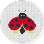 Ladybug Fat Illustraition