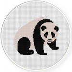Panda Illustraition