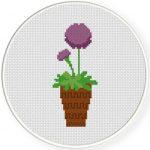 Allium Flower Cross Stitch Illustration