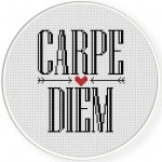 Carpe Diem Cross Stitch Illustration