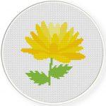 Yellow Chrysanthemum Cross Stitch Illustration