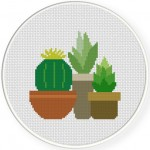 Succulents Cross Stitch Illustration