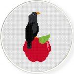Apple And Crow Cross Stitch Illustration