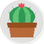 Cactus Bloom Cross Stitch Illustraition